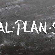business plan pmi
